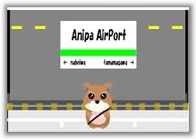 Anipa Airport