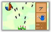 Борьба с насекомыми - 1